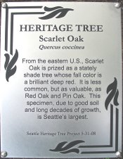 heritage_tree_plaque