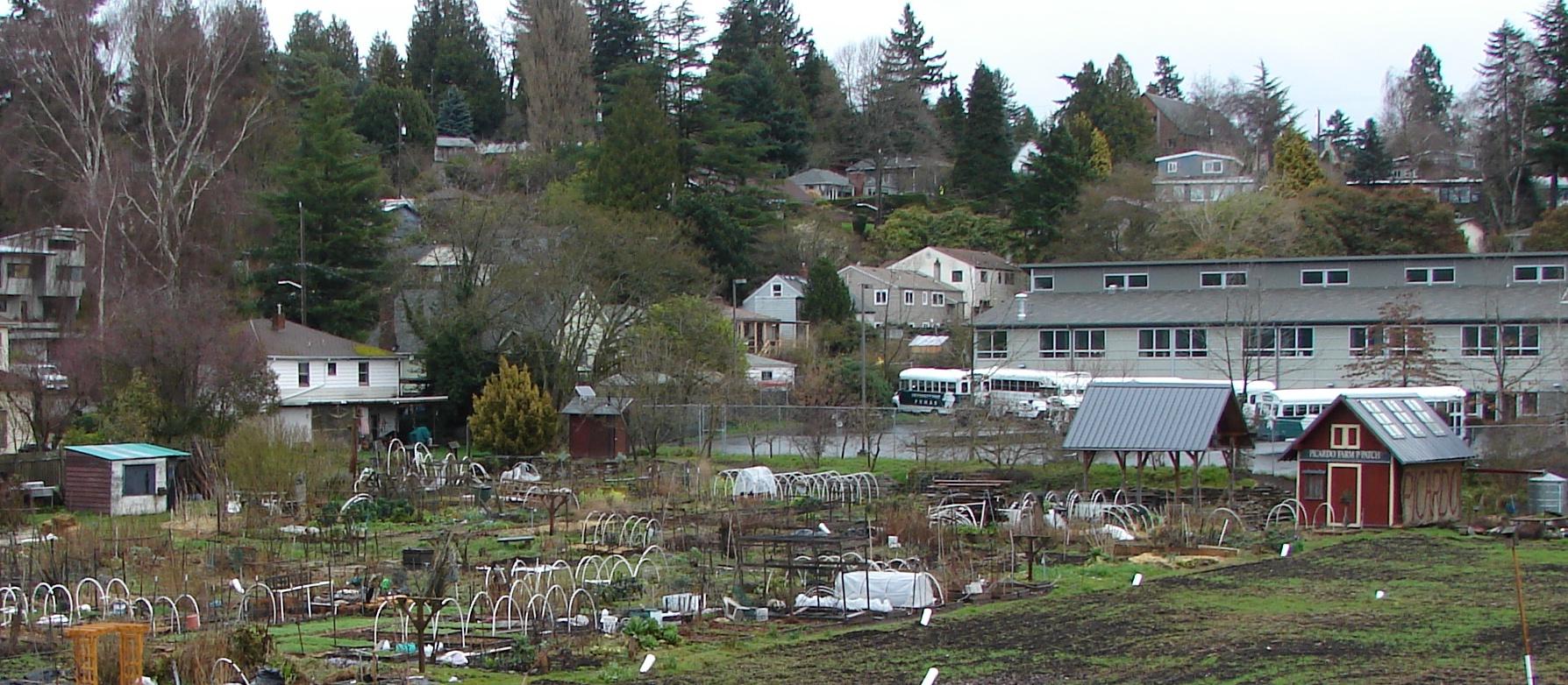 Seattle p patch history maokai