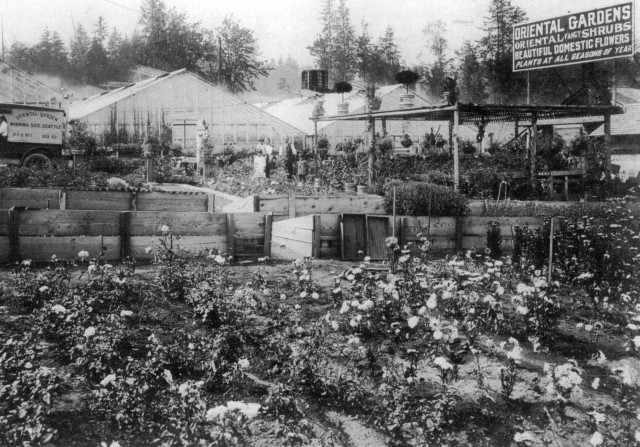 Oriental Gardens as it looked in 1916. The sign faced Ravenna Boulevard on the east side of the nursery. As yet there was no Lake City Way.