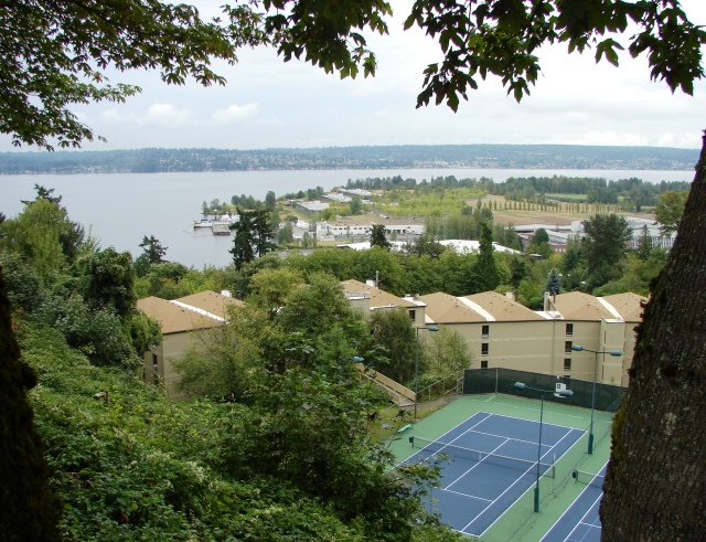 From the cliff edge of the Sand Point Country Club golf course, we see their tennis courts below and the Fairview Estates condominium buildings, with Magnuson Park and Lake Washington beyond.