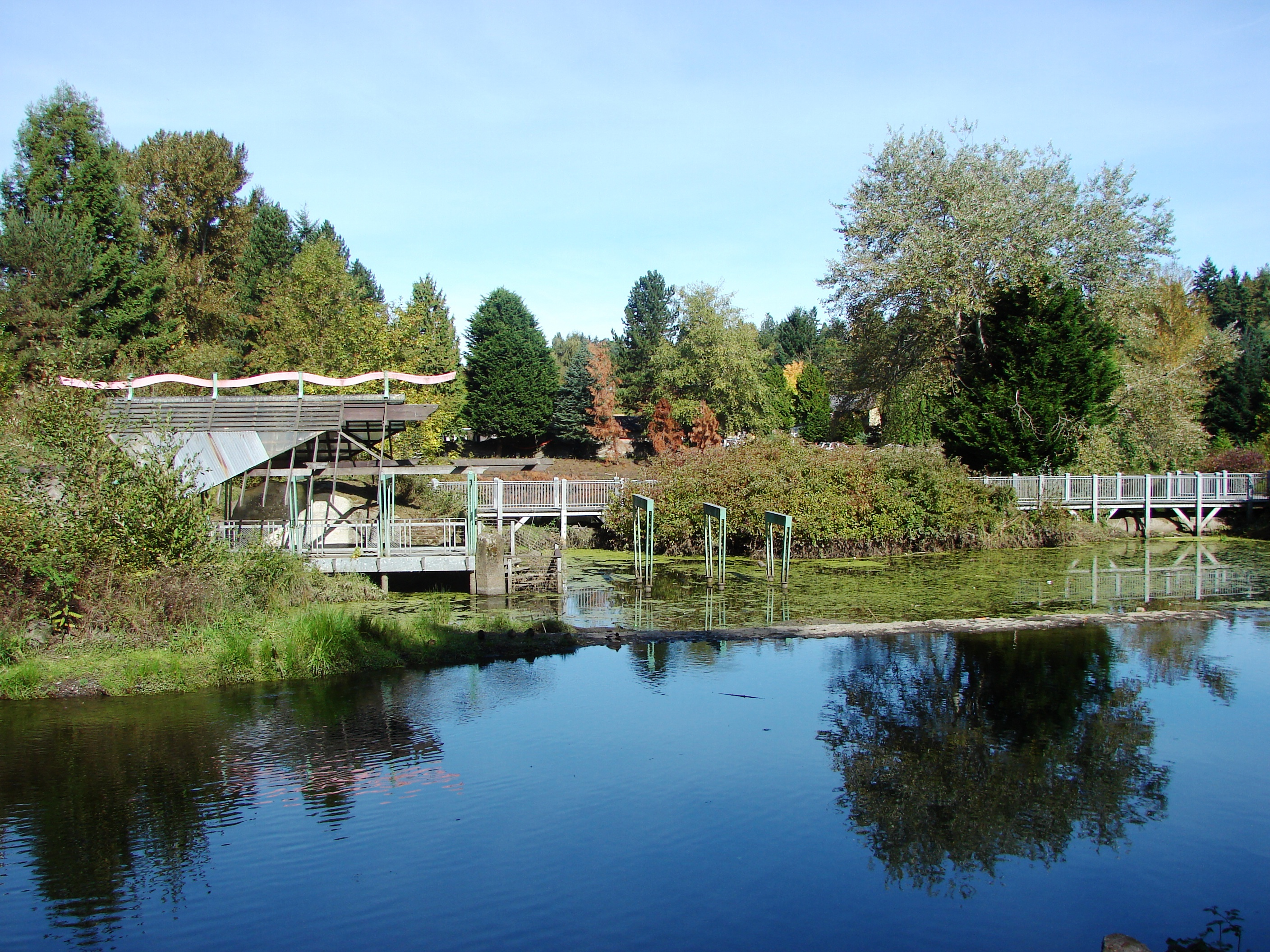 The confluence in 2014 wedgwood in seattle history for The meadowbrook