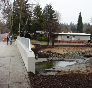 Pedestrians enjoy the new sidewalk and overview of the flood plain for Thornton Creek at Meadowbrook.