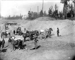 A crew using horse-drawn grading equipment prepared the grounds of the AYPE on the UW campus, Seattle, in 1908. Photo by Frank H. Nowell, UW Special Collections Image Number AYP522.