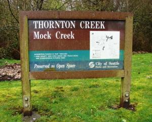 Mock Creek in the Thornton watershed