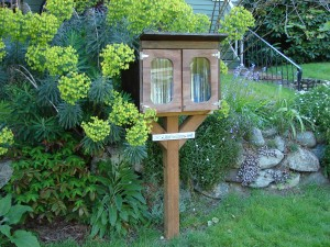 Little Free Library garden setting at 7309 Ravenna Ave NE