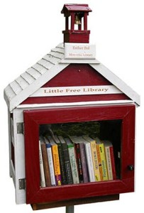 Little Free Library original design