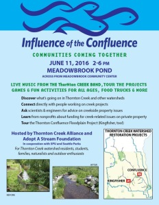 Confluence festival poster.June 11 2016