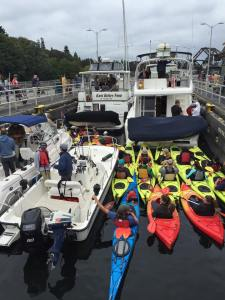 A continual passage of boats of all sizes traveled through the Ballard Locks on SeaFair weekend 2016.