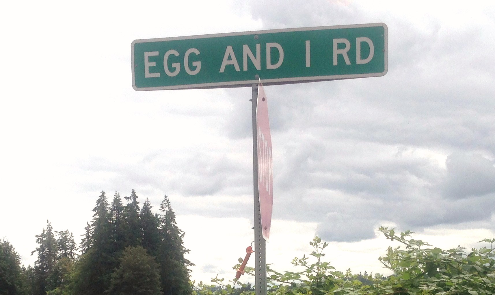 Image result for Betty MacDonald and The Egg and I Road