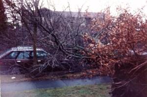 storm day photo 4.january 20 1993